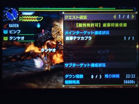 DSC00021_R.jpg