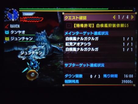 DSC00037_R.jpg