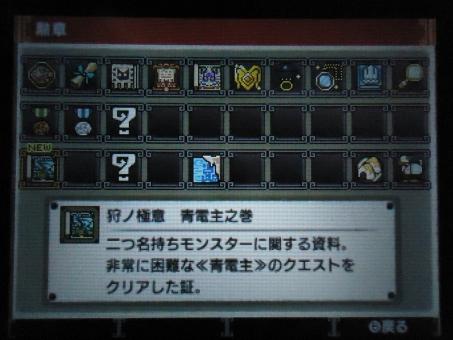 DSC01413_R.jpg