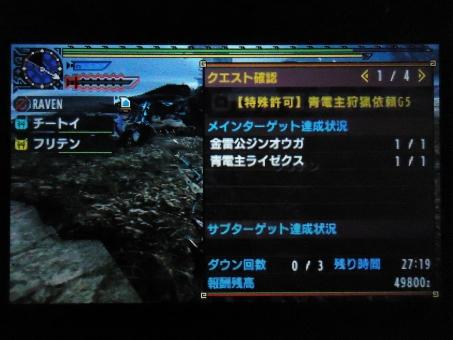 DSC01419_R.jpg