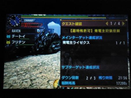 DSC01421_R.jpg