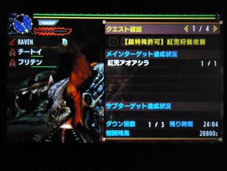 DSC01429_R.jpg
