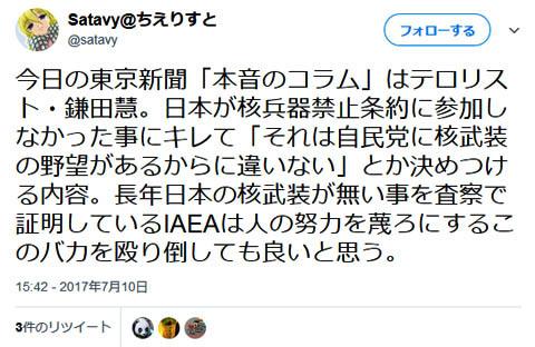 IAEAは蒲田さんを殴って良いとのこと