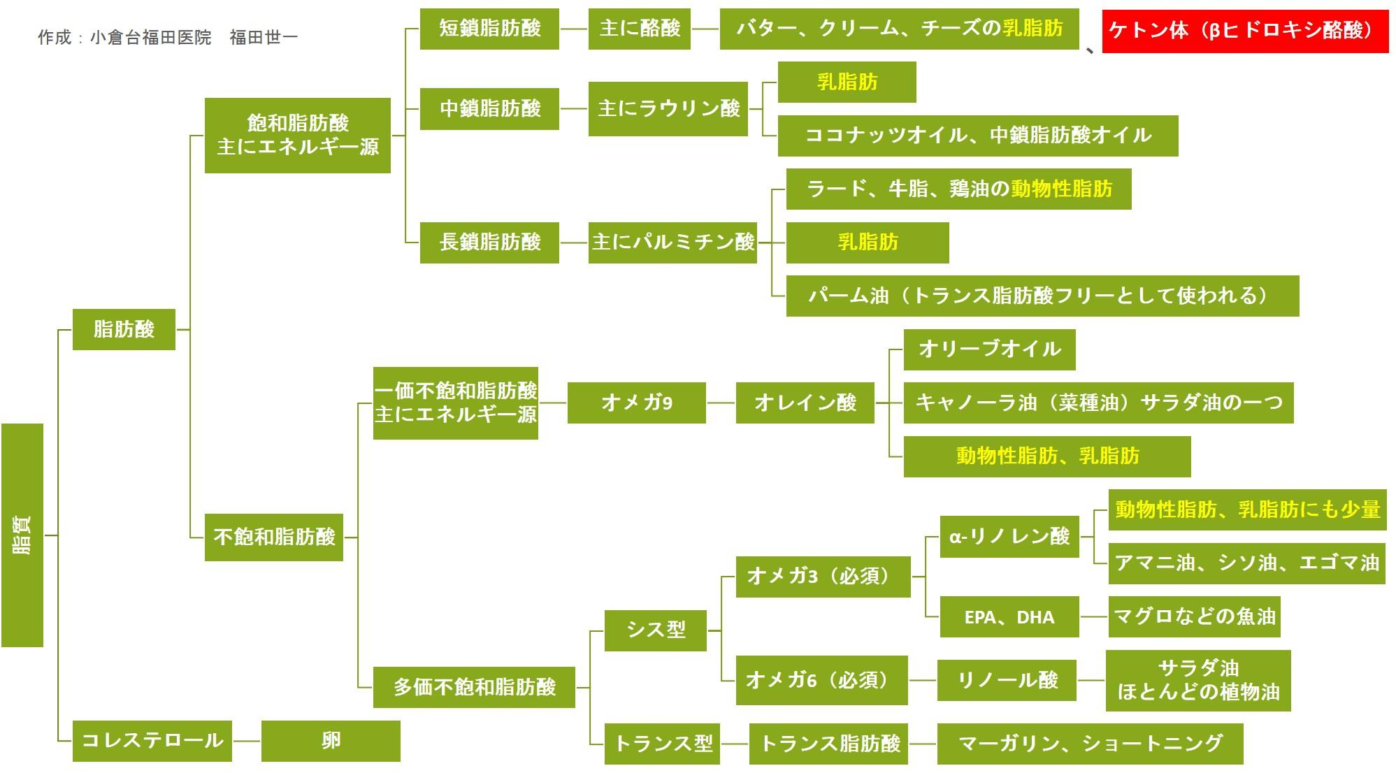 MEC食と脂質階層図