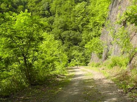 3 長い林道