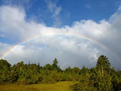 広沢田代の虹
