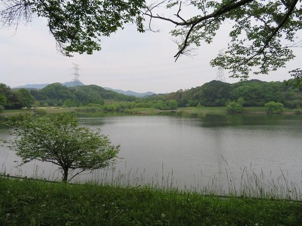 日野川ダム湖