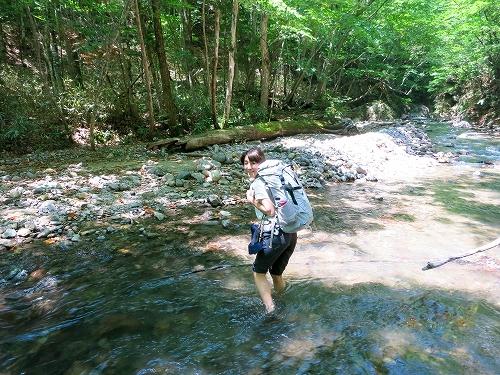 川を横切り