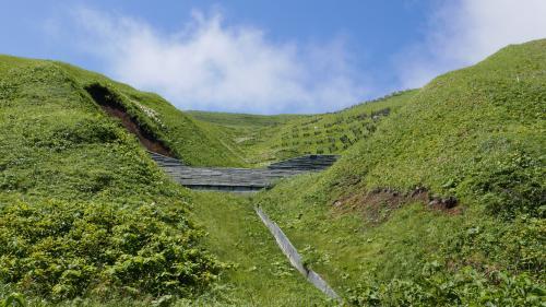 礼文島良い景色