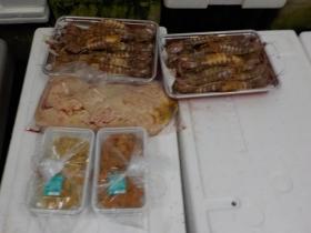 15鮮魚セット2017519