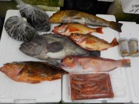 2鮮魚セット2017622