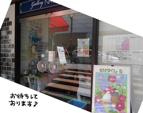 入口KIMG4830