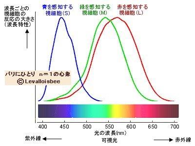 ヒトの色覚は3原色