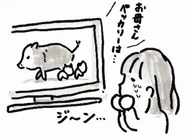 201706093.jpg