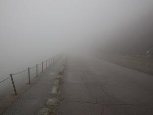 超濃霧&暴風