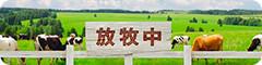 houboku-banner.jpg