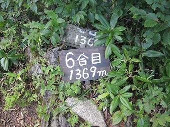 DSCN4206.jpg