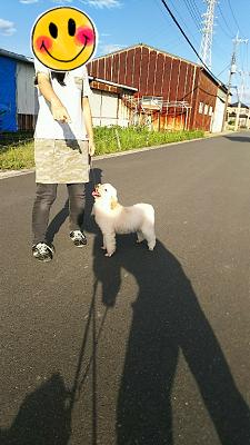 夢散歩 (2)