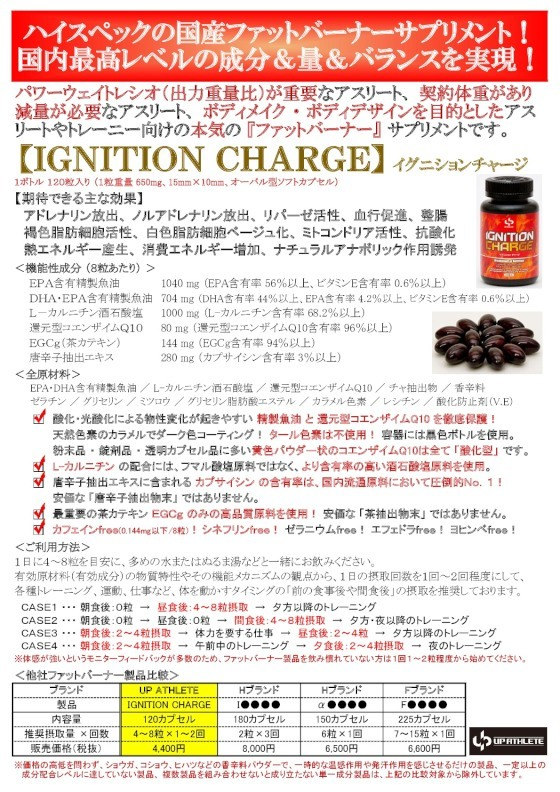 IGNITION店頭用資料-001