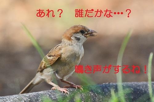 010_20170827200627fe7.jpg