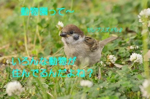 020_201706151950207cc.jpg