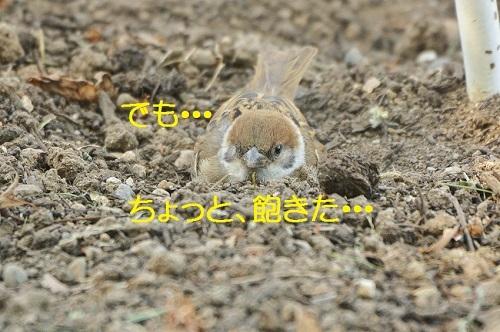 020_201707161907551ee.jpg
