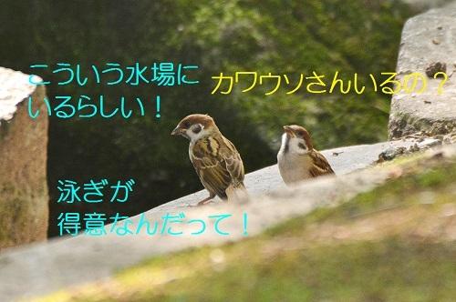 030_201708192121053da.jpg