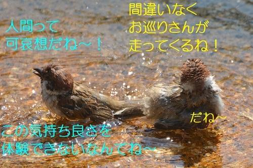 040_201708102001341f0.jpg