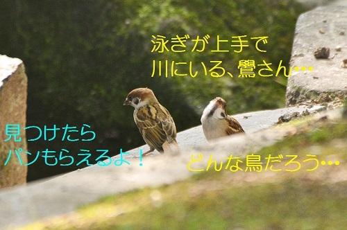 040_20170819212106807.jpg