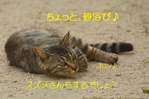 050_201706192034220f7.jpg
