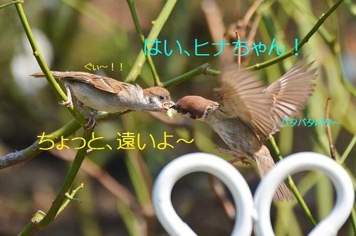 050_20170709200340eda.jpg