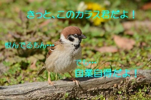 070_201705081904022dc.jpg