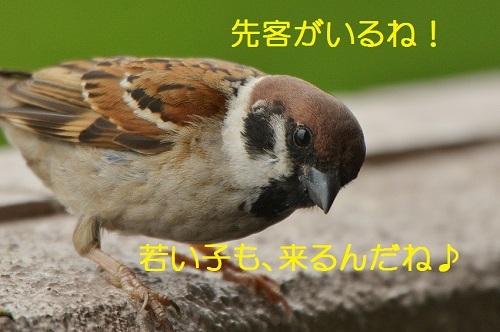 070_20170621202339eed.jpg