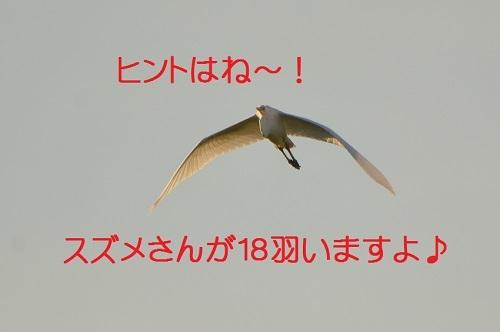 070_2017090120481022f.jpg