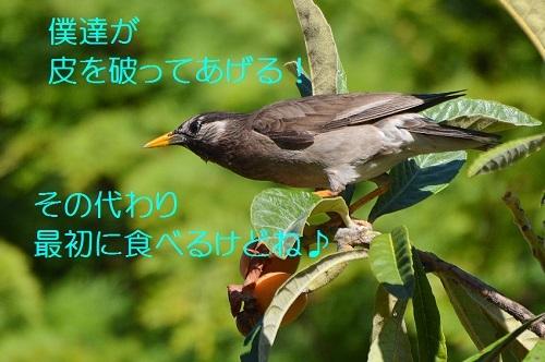 100_20170713200246112.jpg