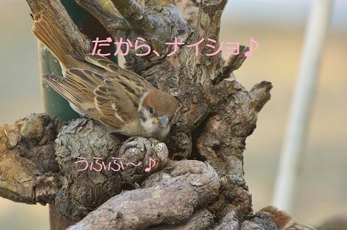 100_20170716191026fae.jpg