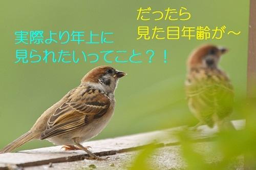 100_201708132125552e0.jpg