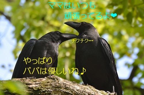120_20170522201513f99.jpg