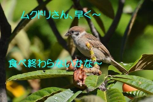 120_20170713200401743.jpg
