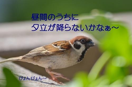 130_20170801202610cf7.jpg