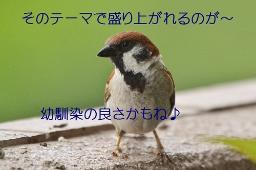 140_201708132126285ce.jpg