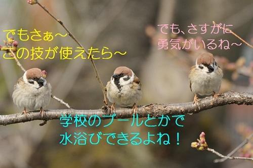150_20170517180848c59.jpg