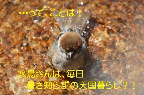 150_201708102002496f9.jpg