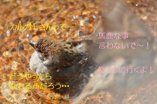 170_20170810200646dfe.jpg