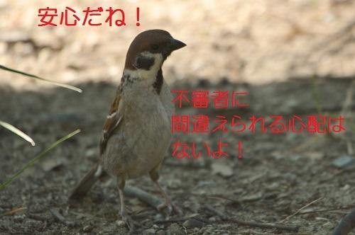 180_20170618193551e0d.jpg