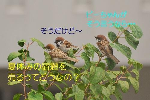 180_20170904034536b4b.jpg
