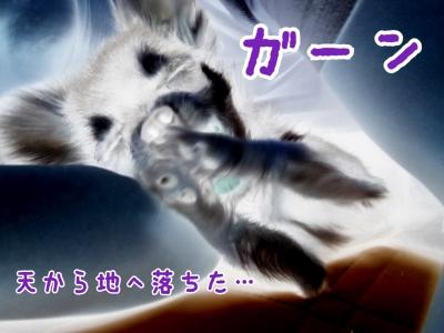 写真 2017-09-03 23 02 37