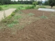 草取りしたアスパラが植えられている場所