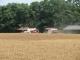 麦刈りのコンバイン