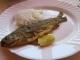 マスの焼き魚